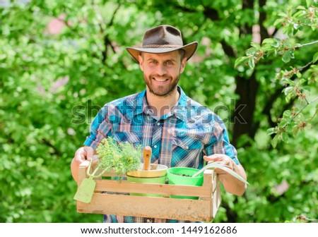 Gardening expert tips. Garden care. Mature farmer man planting plants. Planting season. Bearded gardener guy hold box with flower pot and hoe gardening tool. Gardening advice from professional.