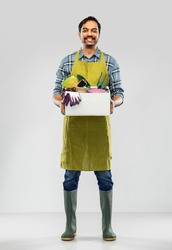 gardening, farming and people concept - happy smiling indian male gardener or farmer in apron and rubber boots with box of garden tools over grey background