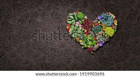 Gardening hobby and garden love landscaping design shaped as a heart with a flowerbed and ornamental plants in a decorative landscaped horticulture symbol for outdoor lifestyle with copy space. Foto stock ©
