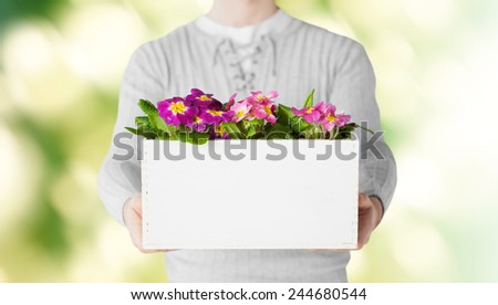 gardening, holidays and people concept - close up of man holding big pot with flowers over green background