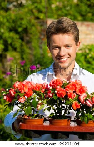 Gardening in summer - man with flowers in his garden