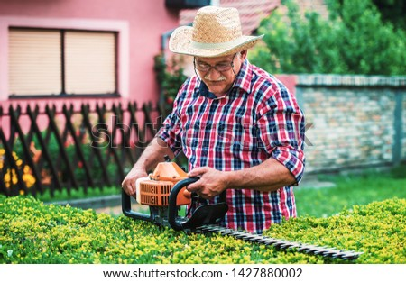 Gardening. Senior man working in the garden, trimming hedge with pruning tools. Hobbies and leisure #1427880002