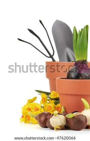 Gardening supplies with flowers and tools on the white.