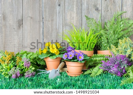 Gardening tools and flowers are on the grass near a wooden unpainted fence. Concept of gardening hobby