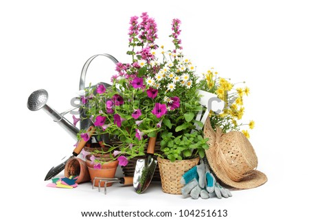 Gardening tools and flowers isolated on white.