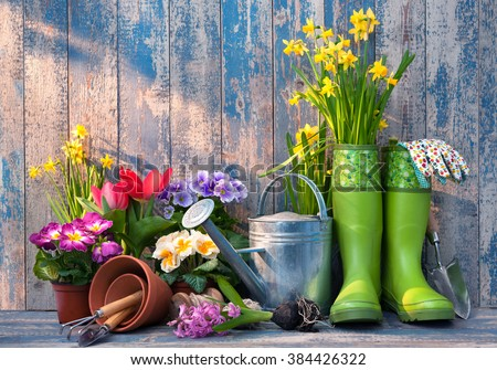 Gardening tools and flowers on the terrace in the garden #384426322