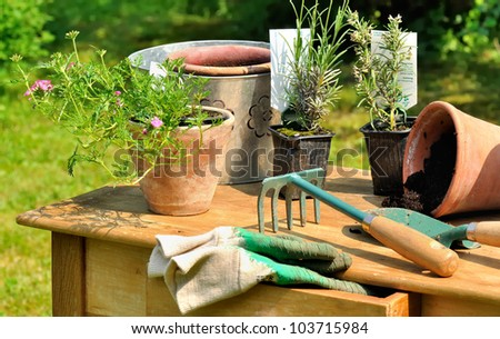gardening tools arranged on a wooden table in the garden