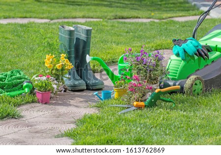 gardening tools concept. Gardening equipment, lawnmower, saw, green watering can, garden plants in pots in the garden