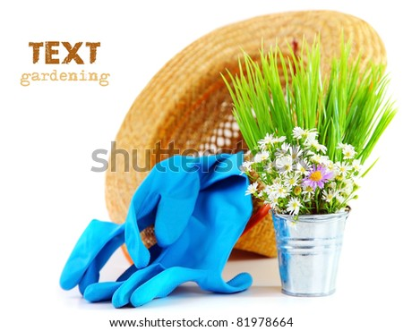 Gardening tools with fresh flowers isolated on white background, organic garden concept