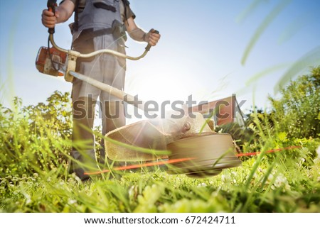 Gardening with a brushcutter #672424711