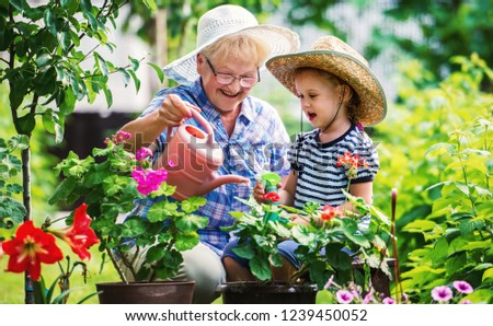 Gardening with a kids. Grandmother and her grandchild enjoying in the garden with flowers. Hobbies and leisure, lifestyle, family life