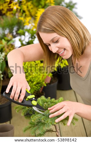 Gardening - woman trimming bonsai tree with pruning shears