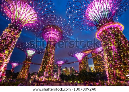 Gardens by the Bay in singapore, 27 March 2016,Amazing lighting of architecture #1007809240
