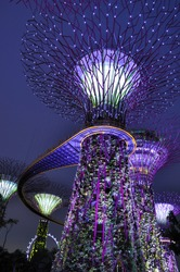 Gardens by the Bay - SuperTree Grove in Singapore. Spanning 101 hectares, and five-minute walk from Bayfront MRT Station.