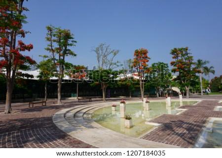 Gardens of mexico #1207184035