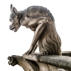 Gargoyle or chimera of Notre Dame de Paris isolated on white background, France. Gargoyles of this cathedral are Gothic landmark in Paris. Famous old demon statue close-up.