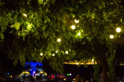 garland of light bulbs glowing with warm light suspended from tree branches in backyard garden with festive decor, closeup night party details, nobody