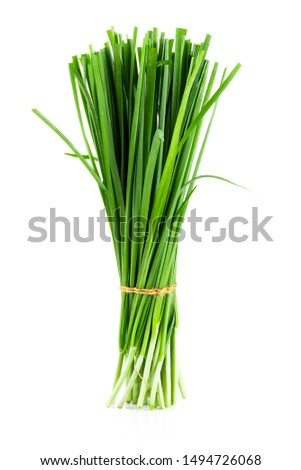 Garlic chives isolated on white background Foto stock ©