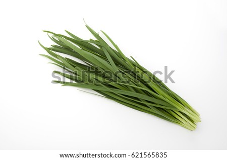 Garlic chives isolated on white background #621565835