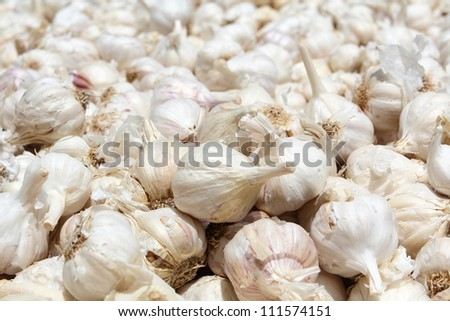 garlic close up of background.