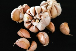 garlic is a pungent vegetable, a food and medicine