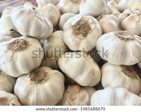 Garlic is a spice that has always been the mainstay ingredient in cooking