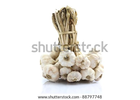 Garlic isolated in white background