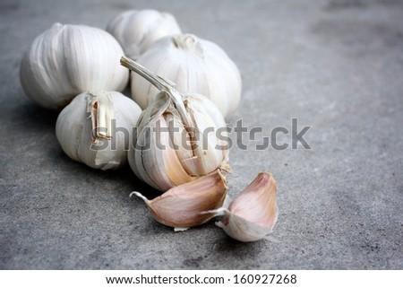 Garlic on the gray background