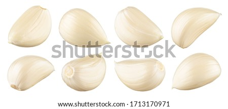 Garlic white background. Garlic cloves on white. Garlic clove isolated. White garlic. Set. Сток-фото ©