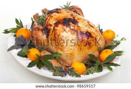 Garnished citrus glazed roasted turkey on tray over white background