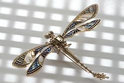 garnishing. dragonfly.