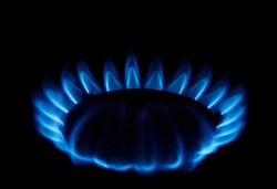 Gas burner on the home stove close-up. Blue flame Propane gas.