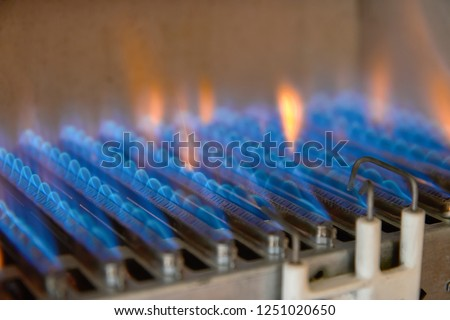 Gas burning in a heating appliance. A stainless steel burner heats a copper heat exchanger. #1251020650