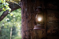 Gasoline lamp hanging of a tree .Vintage Laterne  hanging of a tree.