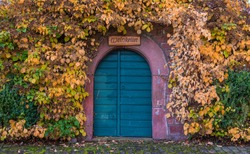 Gate or door to medieval winecellar at autumn