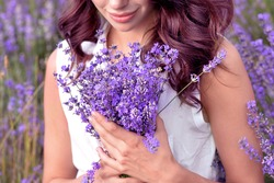 Gathering a bouquet of lavender