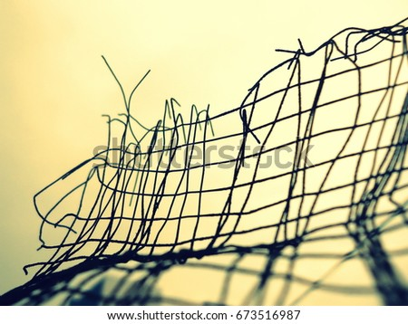 gaze wire abstract