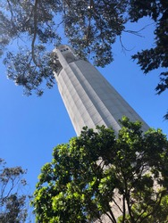 Gazing up at Coit Tower