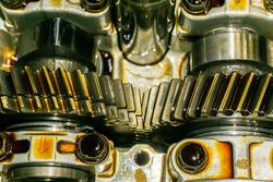 Gears in car engine with lubricant oil on repairing.