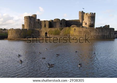 Geese and ducks floating in the moat of Caerphilly Castle, Caerphilly, Wales.