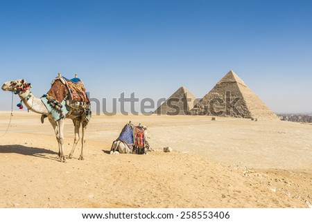 General view of Pyramids of Giza, Egypt #258553406