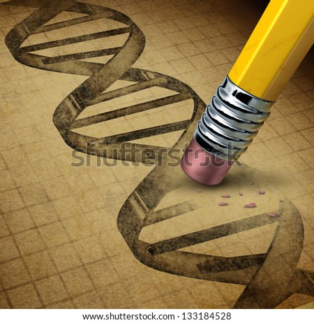 Genetic engineering and DNA manipulation as the biotechnology science of genetically modified foods or living organisms as an image of a dna strand on a parchment texture changed by a pencil eraser. - stock photo