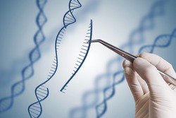 Genetic engineering, GMO and Gene manipulation concept. Hand is inserting sequence of DNA.