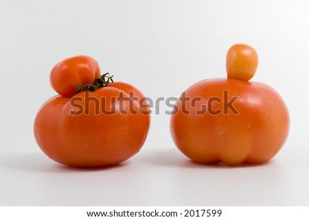 Genetic modify. Unique tomato on white background.