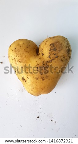 Genetically modified food, heart shaped potato. Social media story size shot. Production of modern farming and genetic engineering.
