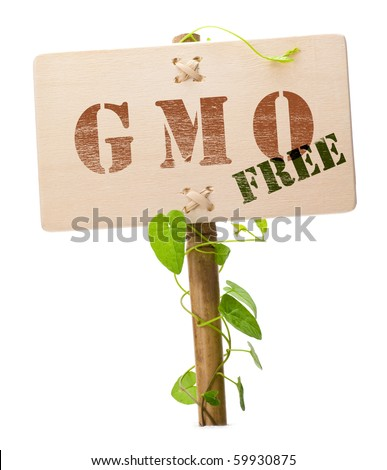 Genetically modified organism GMO free message on a wooden panel and green plant - image is isolated on a white background