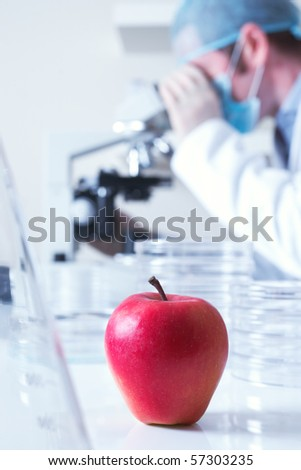 Genetically modified red apple and scientist selective focus