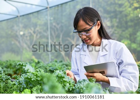Geneticists, biologists, and scientists are studying the genetic structure of vegetables in a nursery. Photo stock ©