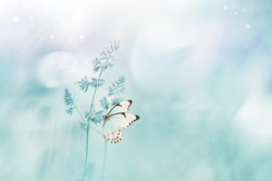 Gentle natural spring background in pastel blue colors. Wild meadow grass and light white butterfly on nature macro. Beautiful summer inspiring image nature.