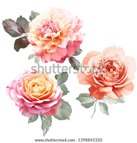 gentle watercolor floral pattern,It's perfect for greeting cards,wedding invitation